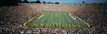 University Of Michigan Stadium, Ann Arbor, Michigan, USA by Panoramic Images