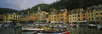 Fishing boats at the harbor, Portofino, Italy by Panoramic Images