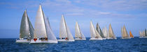 Yachts in the ocean, Key West, Florida, USA von Panoramic Images