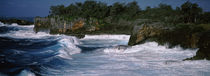 Waves breaking on the coast, Vava'u, Tonga, South Pacific von Panoramic Images