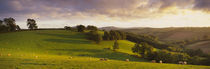 Mid Devon, Devon, England by Panoramic Images