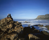 Bettys Bay, Overberg Coast, Western Cape Province, South Africa by Panoramic Images