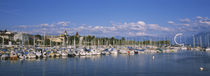 Boats moored at a harbor, Lake Geneva, Lausanne, Switzerland by Panoramic Images