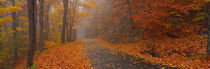 Autumn Road, Monadnock Mountain, New Hampshire, USA by Panoramic Images