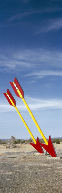 Twin arrows in the field, Route 66, Arizona, USA by Panoramic Images