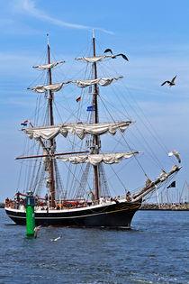 Hanse Sail 2009 - Rostock Warnemünde by captainsilva