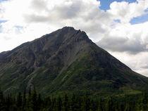 Alaska 4 von Samulis Augustus