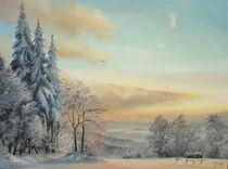 Winter pastel   von Apostolescu  Sorin