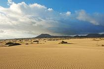 Fuerteventura, Dünenlandschaft bei Corralejo by Frank Rother