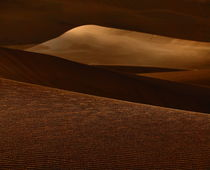 majestic dunes by james smit