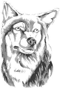 Wolf von Lukasz Wójcik