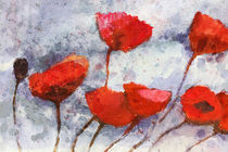 Roter Mohn - Red Poppies von Lutz Baar