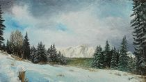 Winter in the mountains / Winter in den Bergen by Apostolescu  Sorin