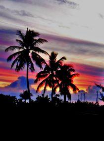 Bahamas Palms by Karina Stinson