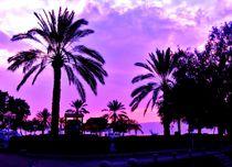 Palms of Israel by Karina Stinson