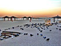 Pigeon's Boardwalk Tel Aviv by Karina Stinson