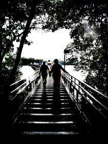 Bridge to Iguazu Waterfalls by Karina Stinson