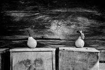 fruits by Dragos Malaescu
