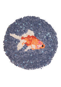 Gold fish illustration hand crafted with fish-tank gravel by Ian Upcott