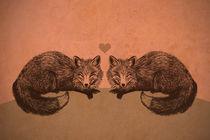 Fox Love von Amy-Jean Hahndiek