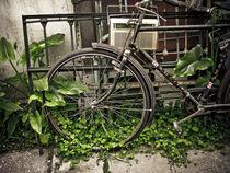 Old bike von Cristobal Ladron de Guevara