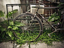 Old bike by Cristobal Ladron de Guevara