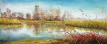 Delta Landscape / Delta Landschaft by Apostolescu  Sorin