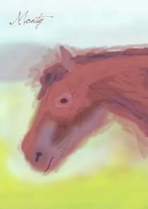 monty the horse by michael  arnott