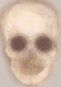 skull  by michael  arnott