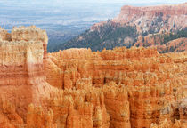 Bryce Canyon National Park by buellom