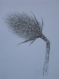 Distelblüte von Katja Finke