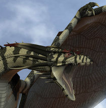 3D DRAGON by Marco Romero