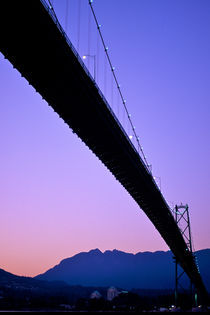 Bridging the Gap 260 by Patrick O'Leary