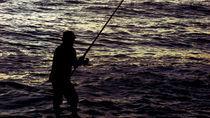 Fisherman von Carlos Reisig