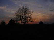 Rural-panorama