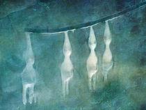 Eiswichtel by Franziska Rullert