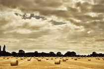 Bales by Philip Cozzolino