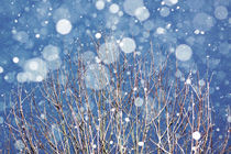 Snow III by hagenland