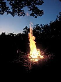 Lady In The Fire von Setareh Hs