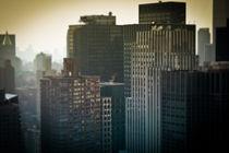New York - City Jungle -  New York City Dschungel by temponaut