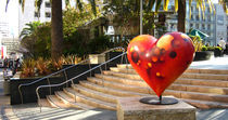 Heart in San Francisco by Daniela Valentini