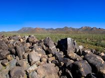 Saguaro-national-park-v-pano-4