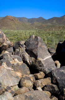 Saguaro-national-park-v-pano-5