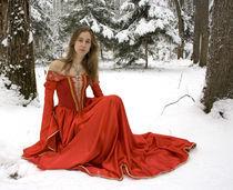 Winter fairy-tale by Ksenia Egorova