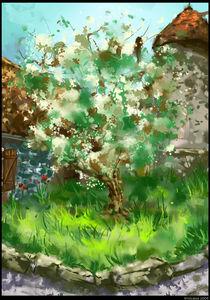 echinghen's tree by toubab