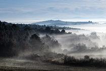 Fog by Marco Vegni