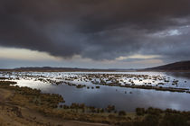 Sunset on Titicaca Lake by Marco Vegni