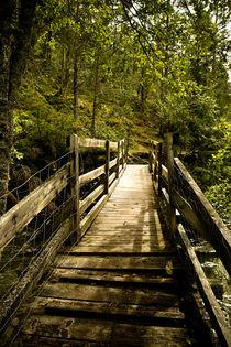 Bridge-to-light