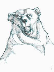 W-bear-100x75