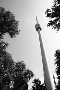 Stuttgart Fernsehturm 5 by Falko Follert